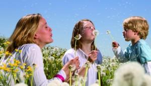 alfea ilmavesilämpöpumput ovat ekologinen valinta